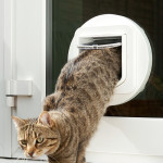 Cat Flap Fitting into Double Glazing
